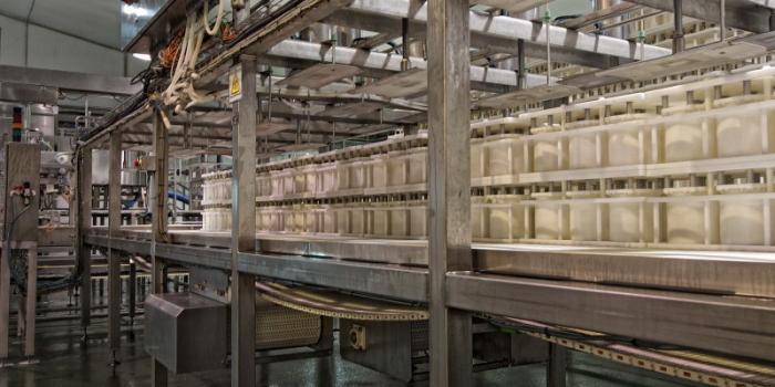 Nueva tecnología de maduración para mejorar la fabricación de queso